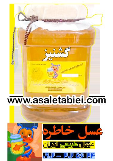 عسل گشنیز (تابستانه) درجه 1